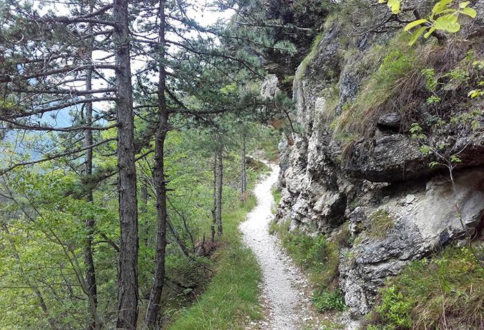 700 Claudia trail