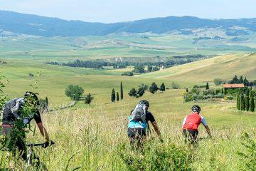 700 Toscana 2