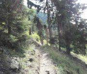 tour-transaalp-via-claudia_20160727_115305